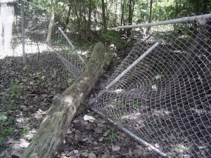 chain-link-fence-repair